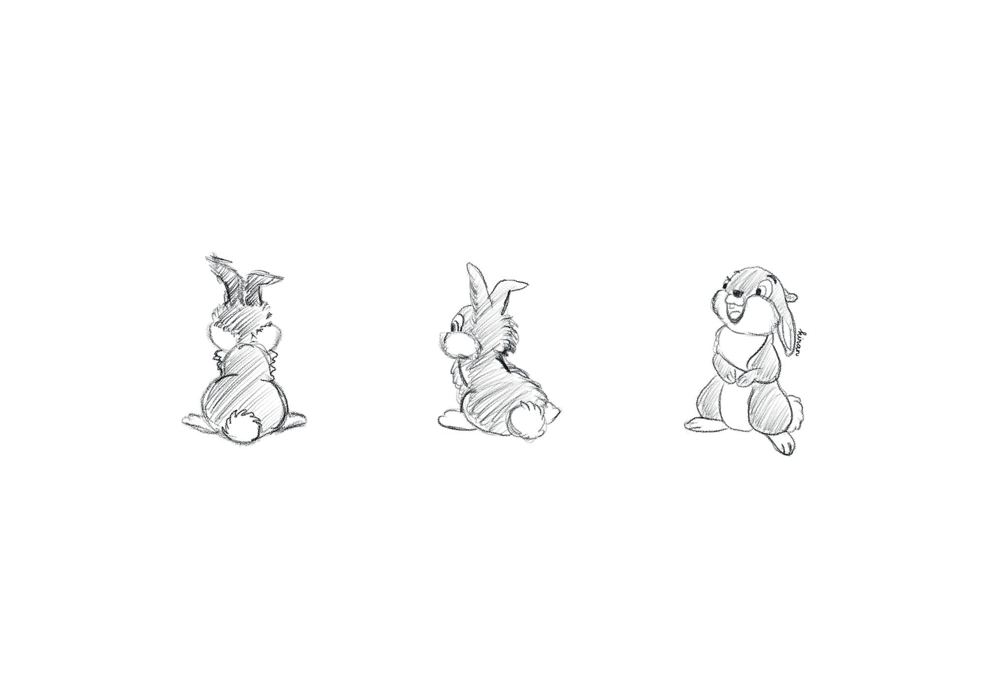 thumbnail-sketching-disney-thumper